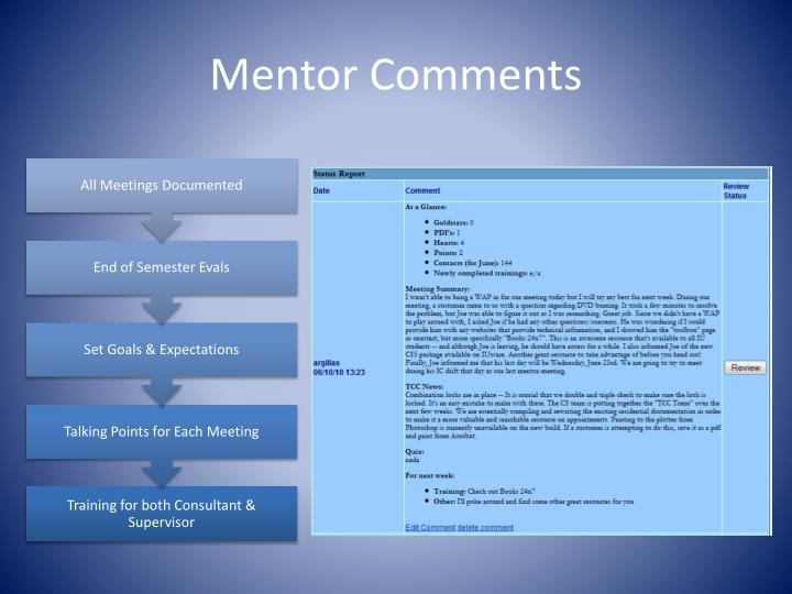 Mentor Comments