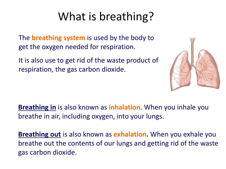 What is breathing?