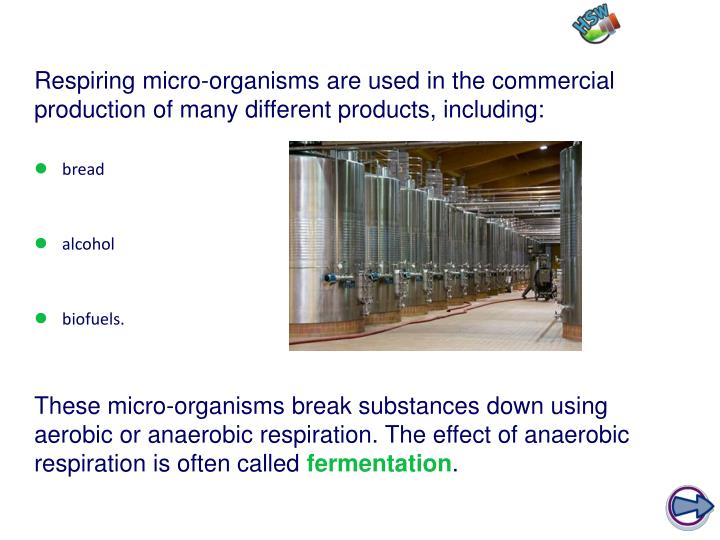 Respiring micro-organisms are used in the commercial production of many different products, including:
