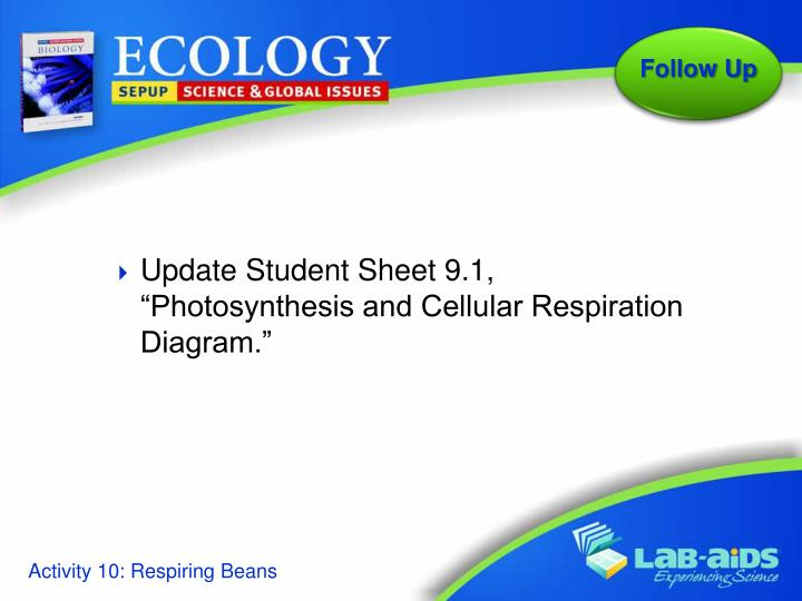 "Update Student Sheet 9.1, ""Photosynthesis and Cellular Respiration Diagram."""