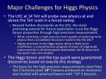 major challenges for higgs physics