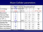 muon collider parameters