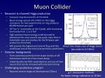 muon collider