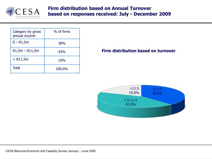 Firm distribution based on Annual Turnover