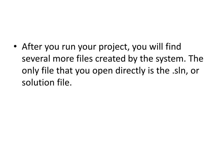 After you run your project, you will find several more files created