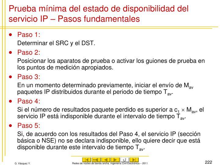 Prueba mínima del estado de disponibilidad del servicio IP – Pasos fundamentales