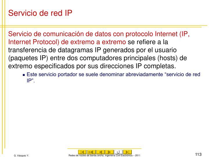 Servicio de red IP