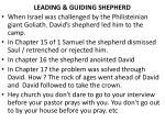 leading guiding shepherd