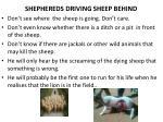 shephereds driving sheep behind