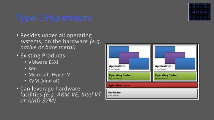 Type-1 Hypervisors