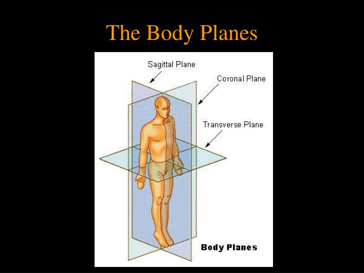 The Body Planes