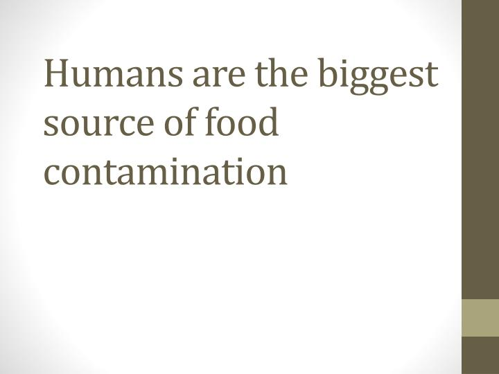 Humans are the biggest source of food contamination