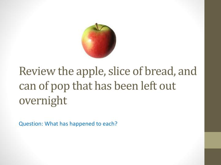 Review the apple, slice of bread, and can of pop that has been left out overnight