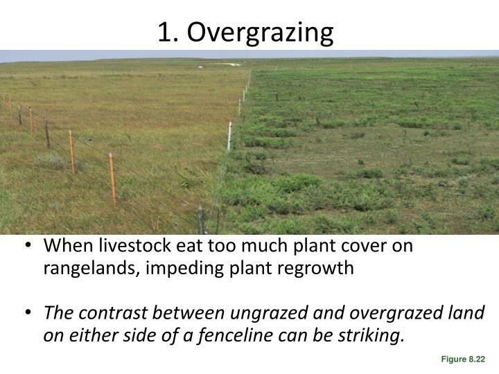 1. Overgrazing