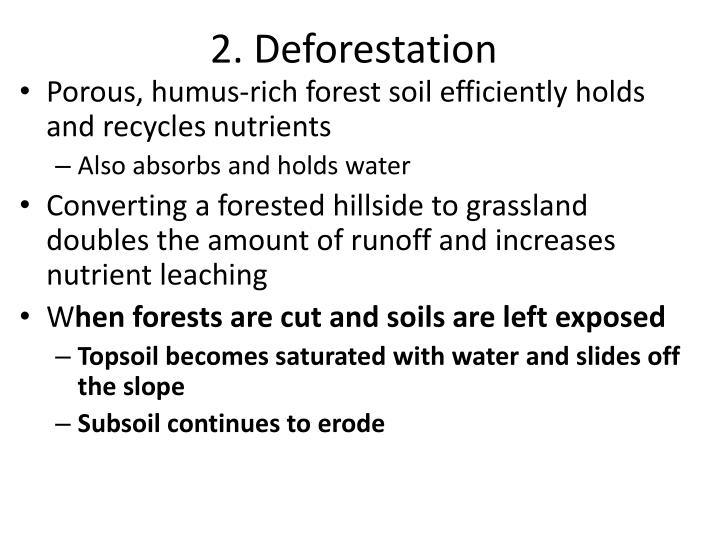 2. Deforestation