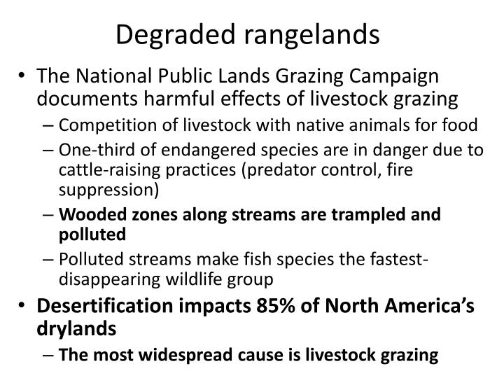 Degraded rangelands