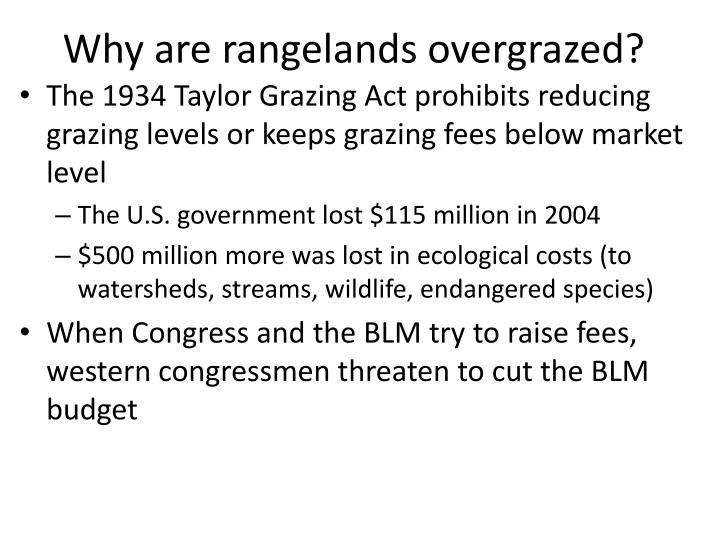 Why are rangelands overgrazed?