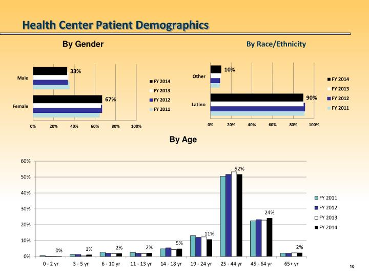 Health Center Patient Demographics