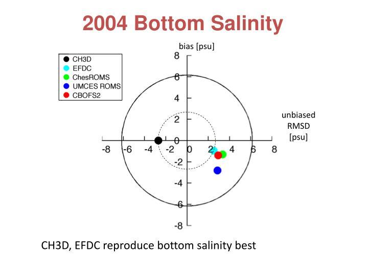 2004 Bottom Salinity
