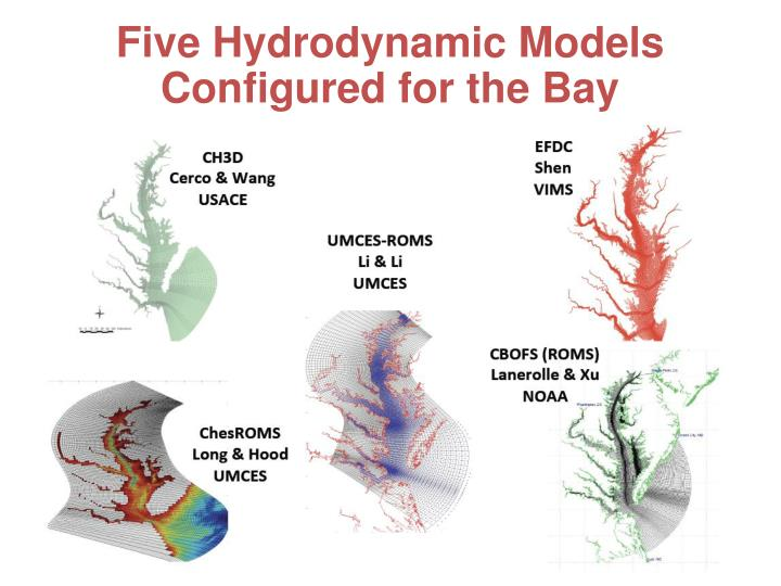 Five Hydrodynamic Models Configured for the Bay