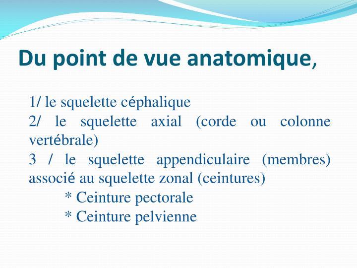 Du point de vue anatomique