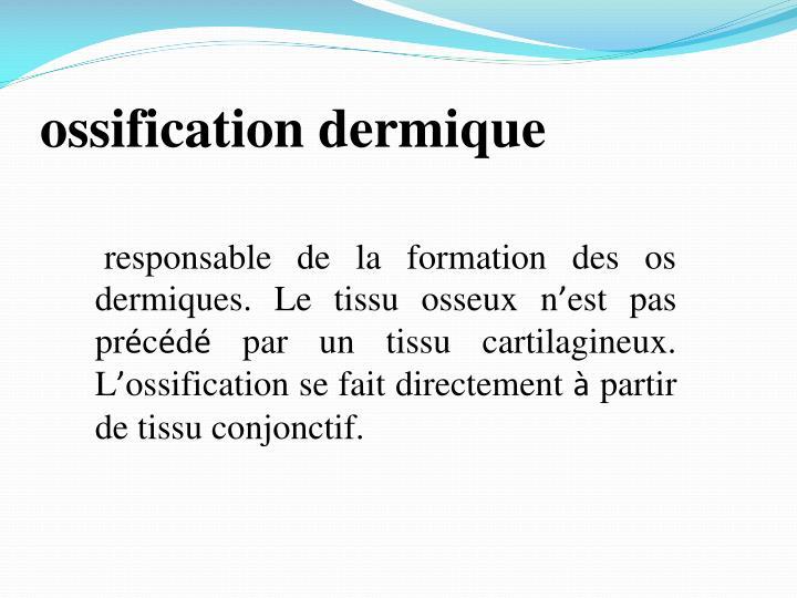 ossification dermique