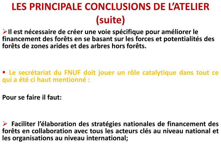 LES PRINCIPALE CONCLUSIONS DE L'ATELIER (suite)