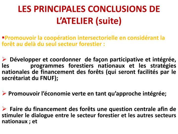 LES PRINCIPALES CONCLUSIONS DE L'ATELIER (suite)