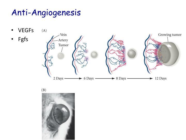 Anti-Angiogenesis