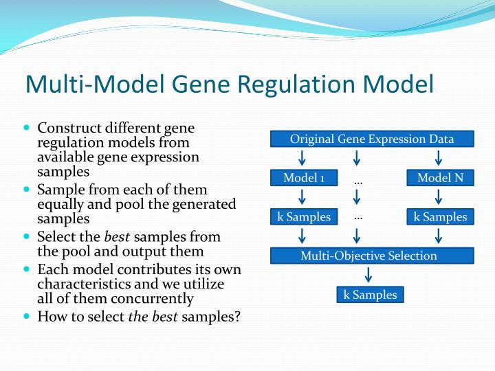 Multi-Model Gene Regulation Model