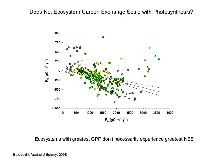 Does Net Ecosystem Carbon Exchange Scale with Photosynthesis?