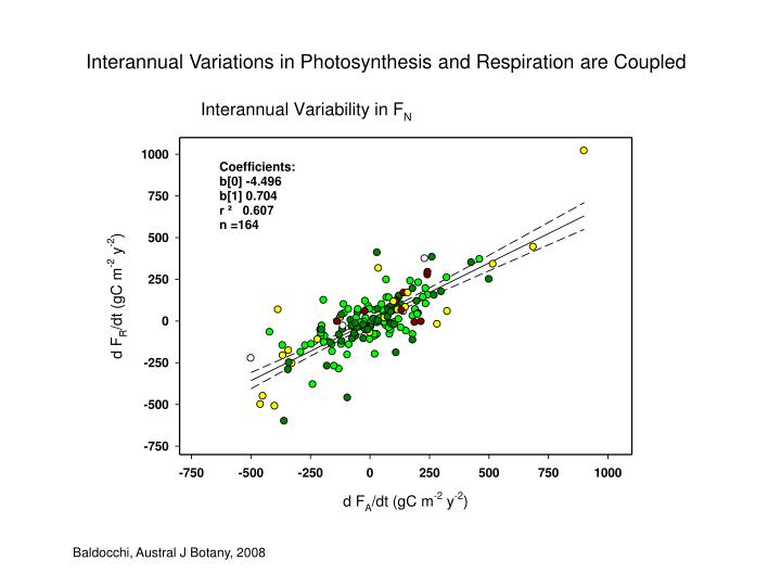 Interannual Variations in Photosynthesis and Respiration are Coupled