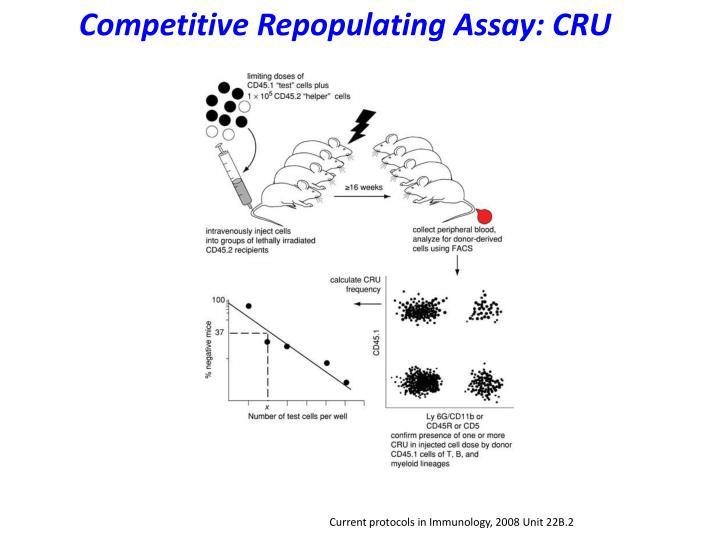 Competitive Repopulating Assay: CRU