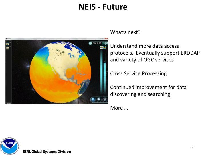 NEIS - Future