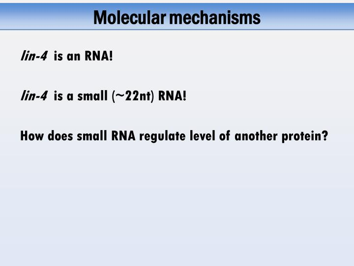 Molecular mechanisms