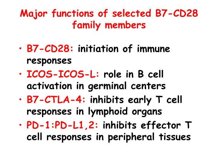 Major functions of selected B7-CD28 family members