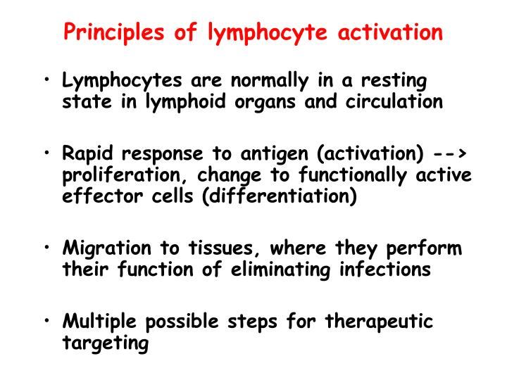 Principles of lymphocyte activation
