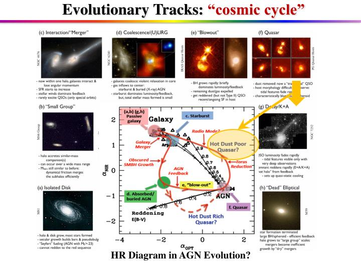 Evolutionary Tracks: