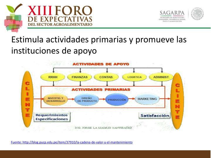 Estimula actividades primarias y promueve las instituciones de apoyo