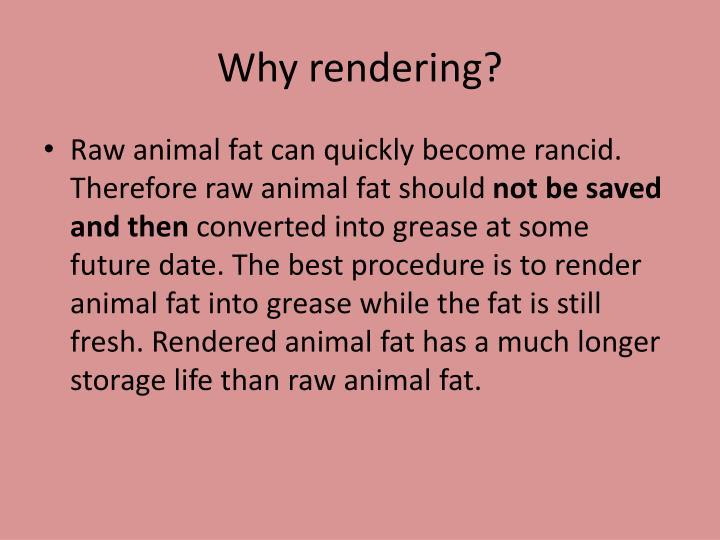 Why rendering?