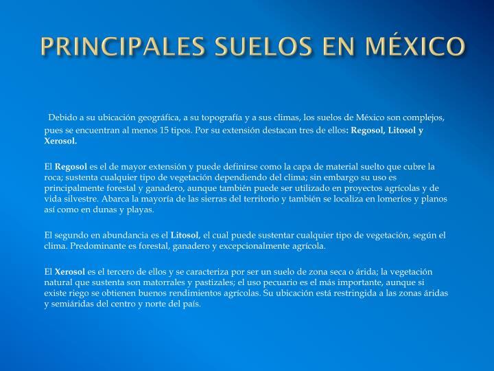 PRINCIPALES SUELOS EN MÉXICO