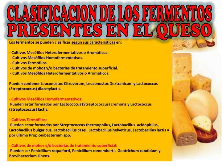 CLASIFICACION DE LOS FERMENTOS