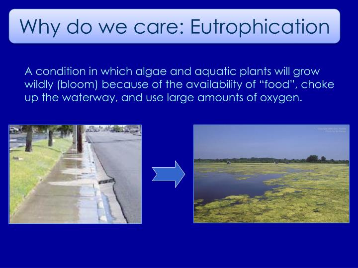 Why do we care: Eutrophication