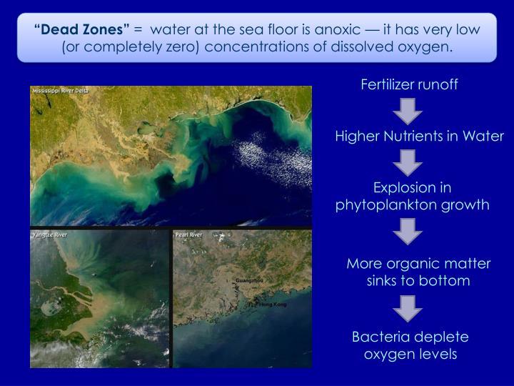 """""""Dead Zones"""""""