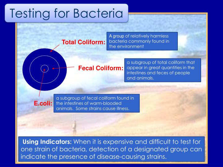 Total Coliform: