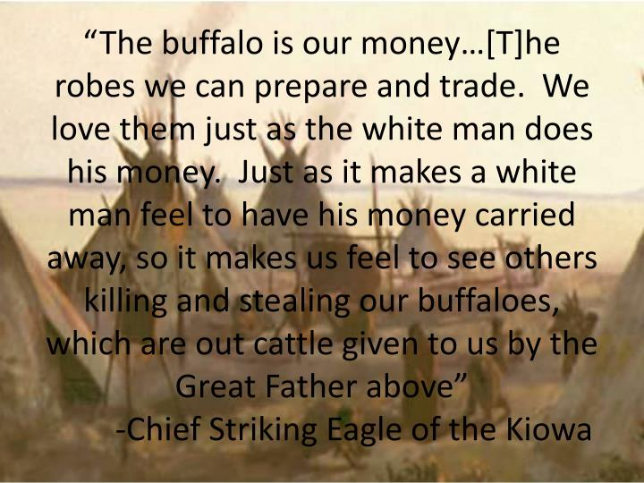 """The buffalo is our money…[T]he robes we can prepare and trade.  We love them just as the white man does his money.  Just as it makes a white man feel to have his money carried away, so it makes us feel to see others killing and stealing our buffaloes, which are out cattle given to us by the Great Father above"""