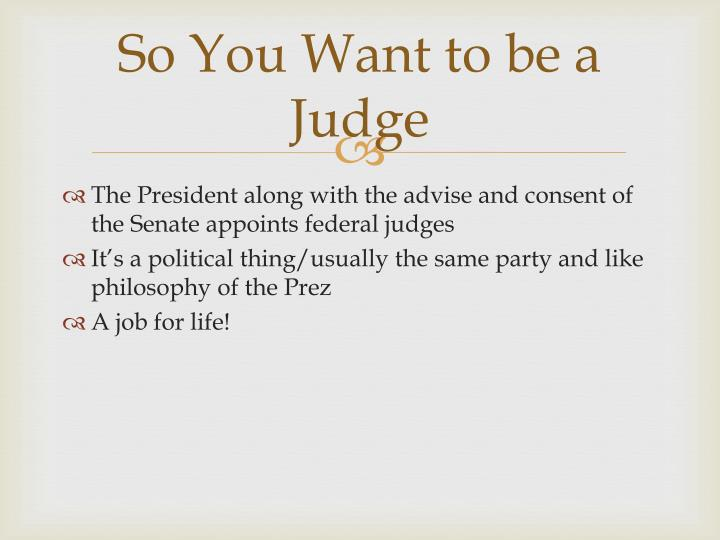 So You Want to be a Judge
