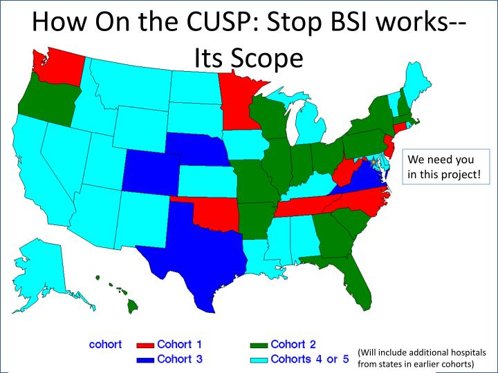 How On the CUSP: Stop BSI works--