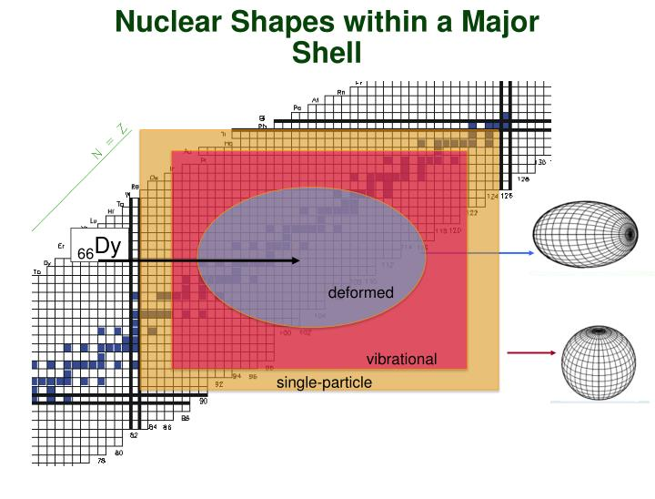 Nuclear Shapes within a Major Shell