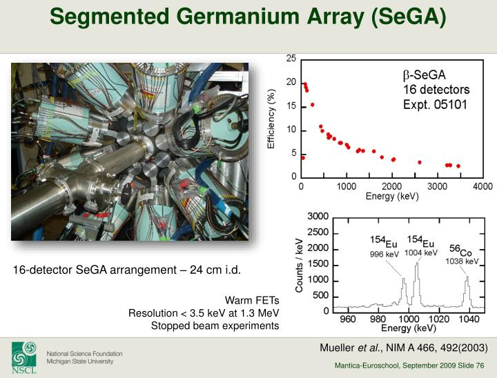 Segmented Germanium Array (
